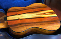 Brazilian Rosewood Dreadnought Guitar